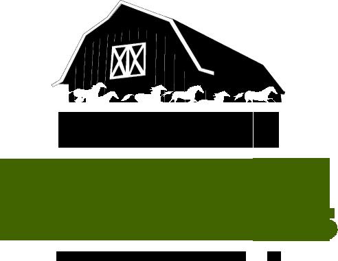 Rustic Weddings Orlando Logo